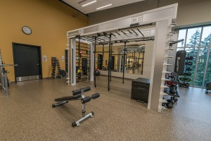 Queenax Functional Fitness Piece in Fitness Center