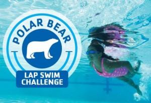 Polar Bear lap swim challenge